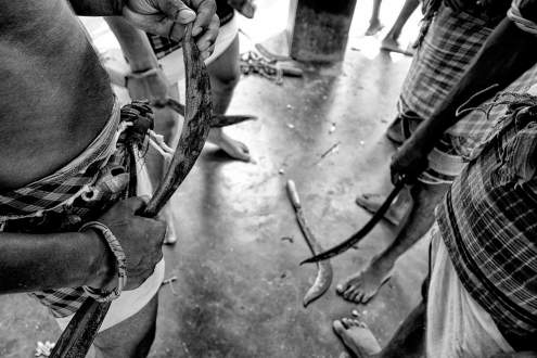 After the prayers, Sannyasis, are equipped with blades