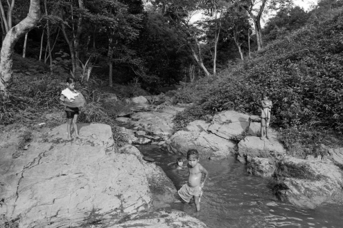 A group of children is playing on a creek